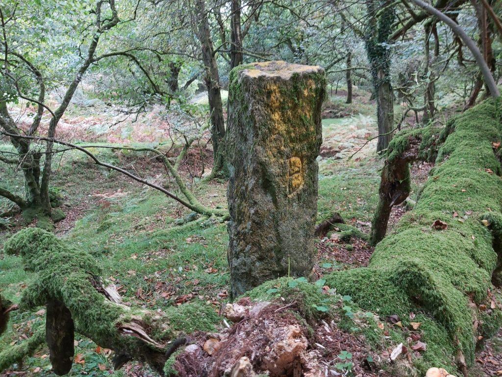 Boundary Stone 2