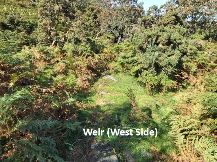 DCM Weir 1