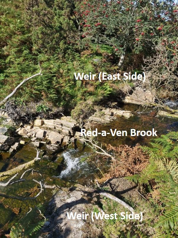 DCM Weir 2