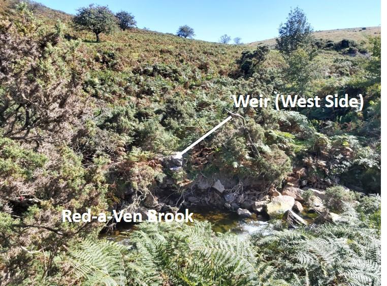 DCM Weir 4