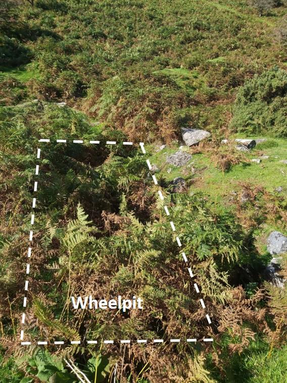 DCM Wheelpit 1