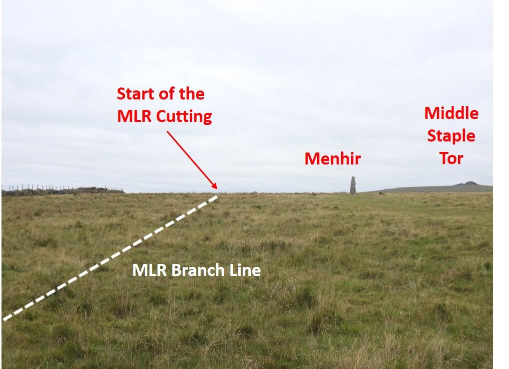 MLR 11