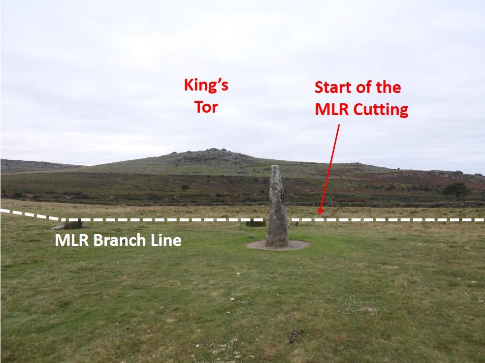 MLR 12