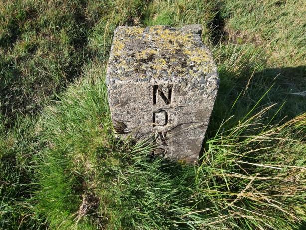 NDWB 7b