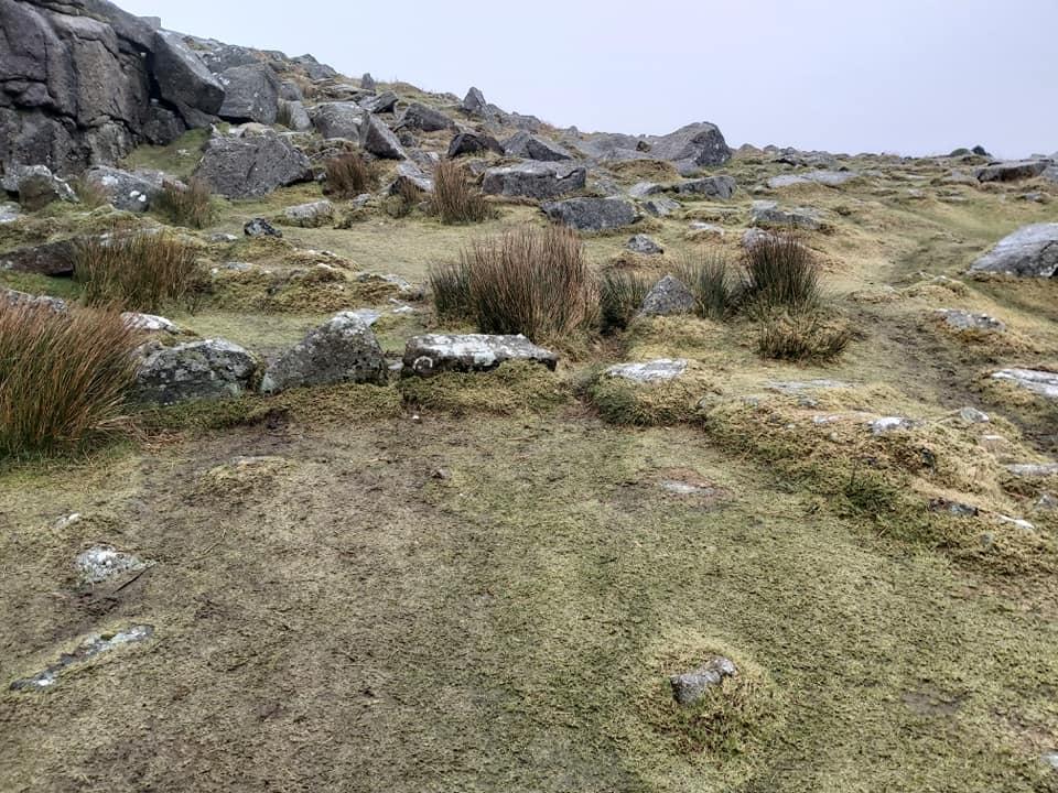 Sheepstor 24