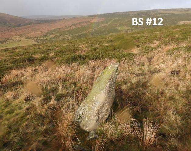 BS12b