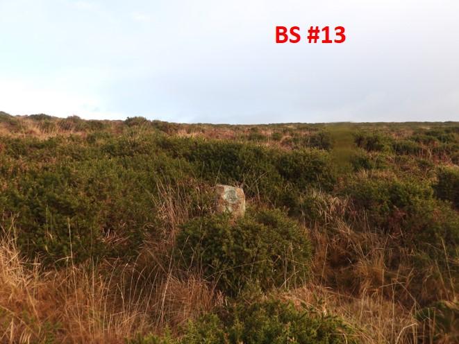 BS13b