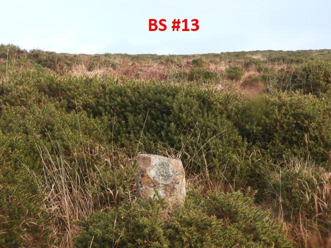 BS13c