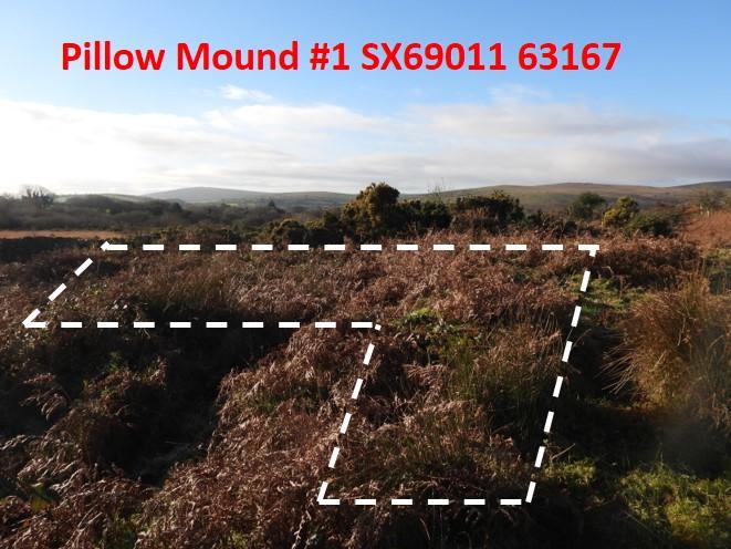 Pillow Mound 1a