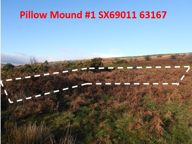 Pillow Mound 1b