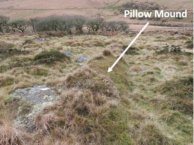Pillow Mound 2