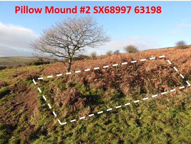 Pillow Mound 2a