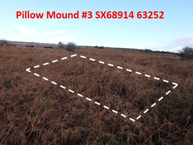 Pillow Mound 3a