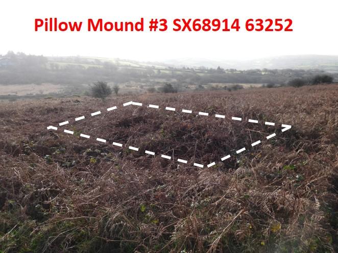 Pillow Mound 3b