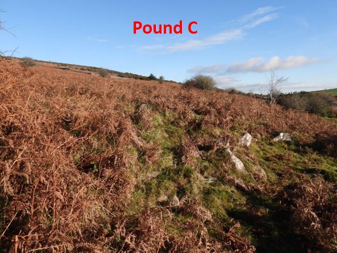 Pound C1