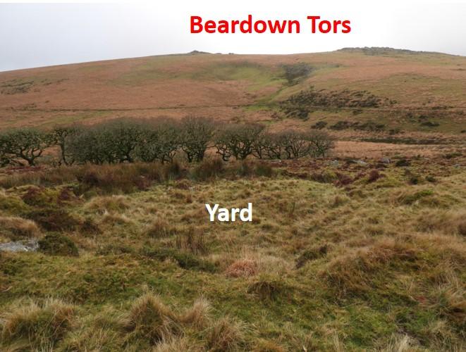 Yard 3
