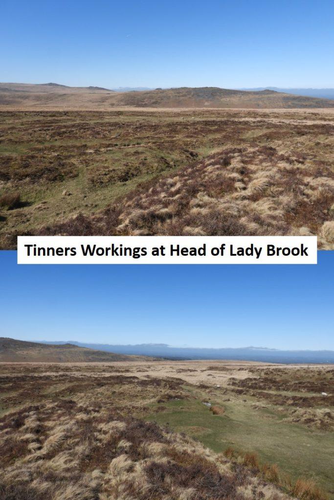 Head Lady Brook