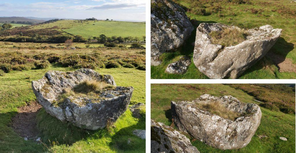 WTM 6 - Clove Stone