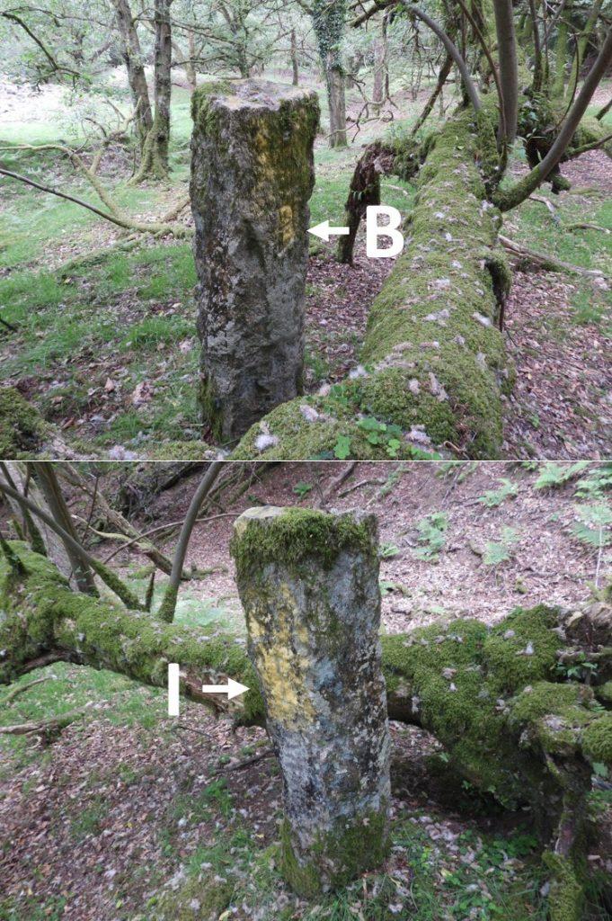 Boundary Stone 5