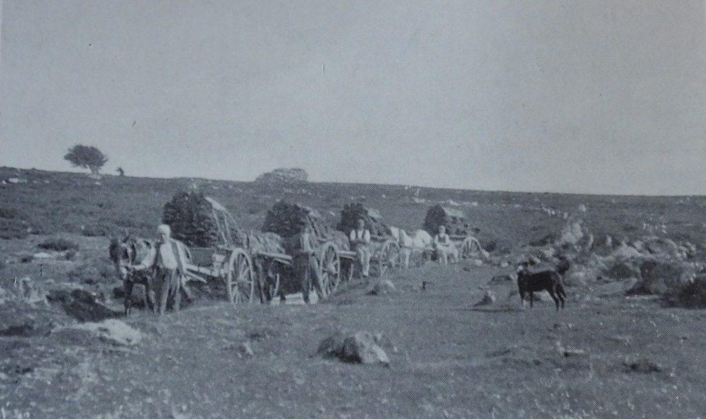 Peat Cutting 1903