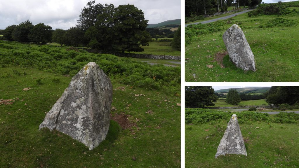 Piked Stone