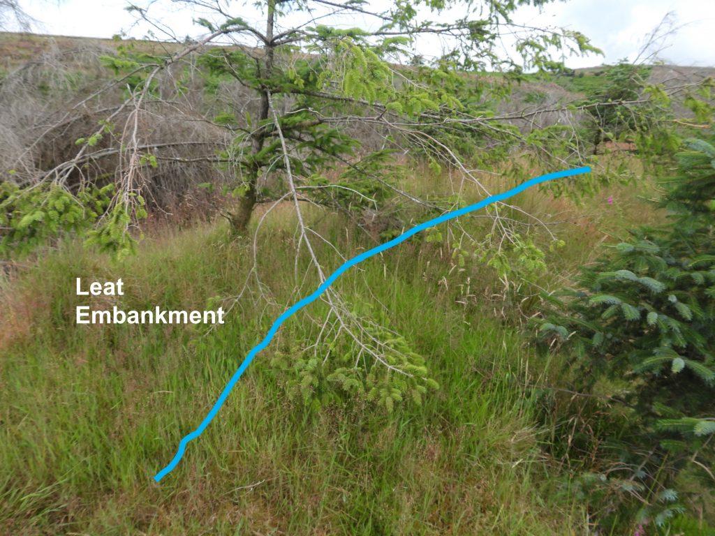 STSM Leat Embankment