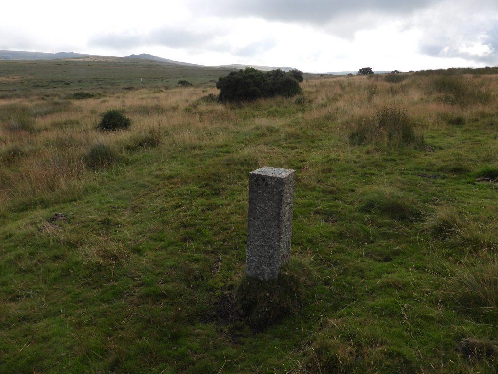 2. Modern Boundstone