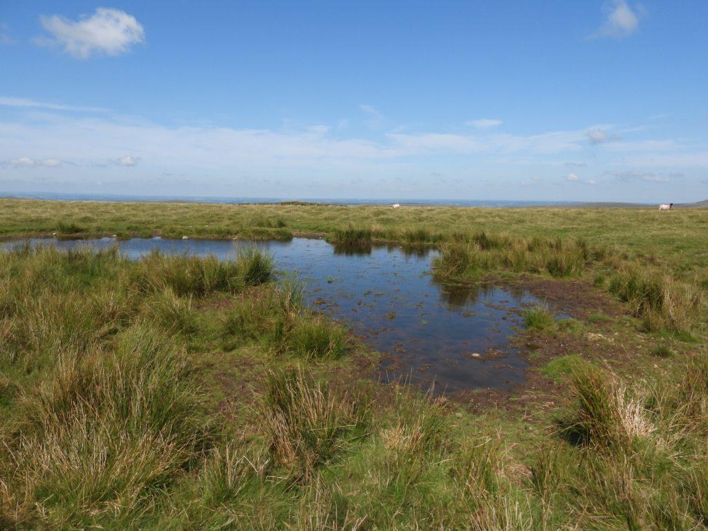 4 - Langstone Moor Pool
